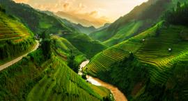 פוטו מקומות צבעוניים טרסות אורז ויאטנם מה צונג' צ'אי, צילום: שאטרסטוק
