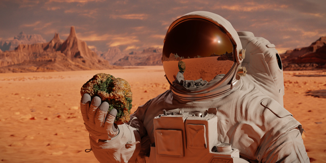 Morality on Mars: What's to stop future spacefarers from ruining other planets?