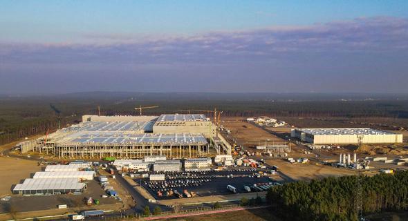 השטח שעליו אמור להיבנות מפעל טסלה בגרונהייד, גרמניה. פעם פגזים, פעם נחשים - וכעת בעיה בהגשת האישורים, צילום: רויטרס