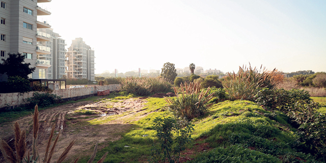 צמח המרמן, ישראל קנדה גראם מגורים ואביסרור יקימו 482 דירות ברמת השרון