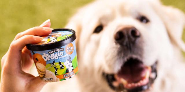 שותפים לגביע: בן אנד ג'ריס משיקה גלידות לכלבים