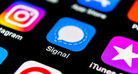 אפליקציית השיחות סינגל Signal App, Credit: Shutterstock