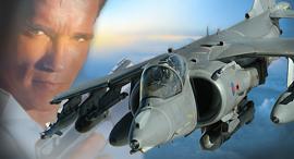 הארייר וחבר, צילום: RAF,universal