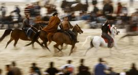פנאי מרוץ סוסים ב עזה, צילום: אי אף פי