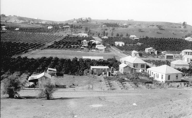 המושבה החקלאית בני ברק, 1933