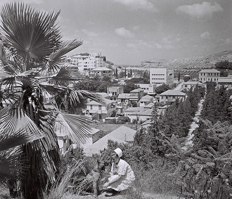 בני ברק, 1946