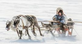 פוטו תחרות צילומי טיולים 2020 מזחלת, צילום: TPOTY, Vladimir Alekseev