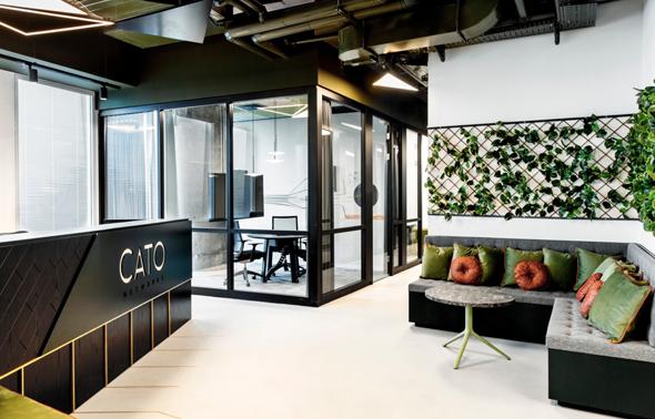משרדי Cato