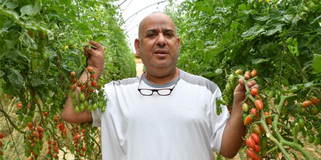 """חקלאי תובע את רשת רמי לוי: """"לא שילמו על מה שקיבלו. הרסו אותי"""""""