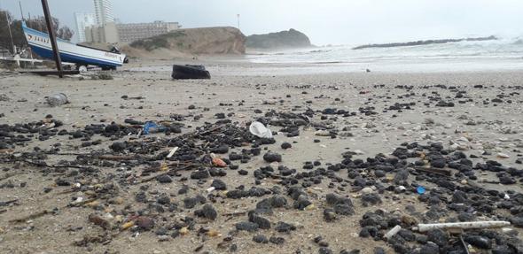 זיהום החופים בזפת