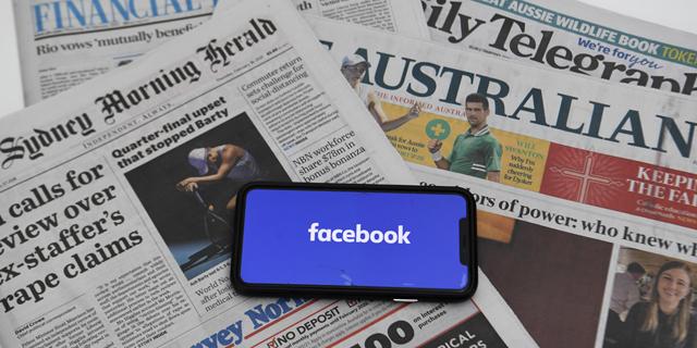 פייסבוק טיפסה על העץ הכי גבוה באוסטרליה וכעת היא ממתינה לסולם