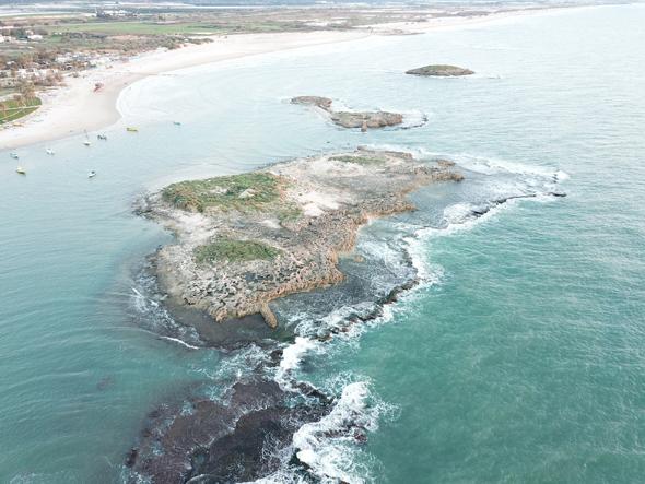 זיהום זפת, חוף דור