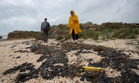המשרד להגנת הסביבה: אין כתם נפט נוסף בדרך לישראל