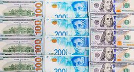 """שקל דולר מט""""ח מטבע חוץ שקלים דולרים, צילום: שאטרסטוק"""