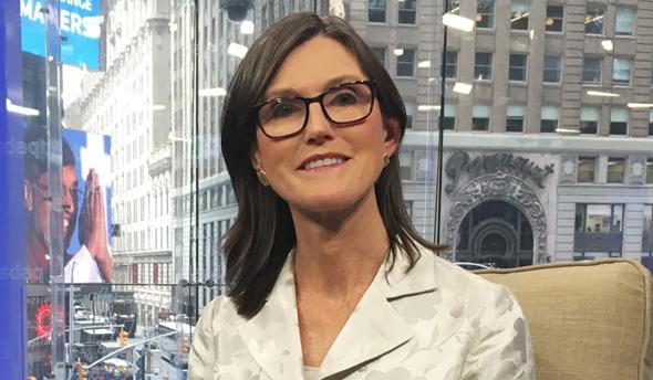 """קאת'י ווד, מייסדת ומנכ""""לית קרן ההשקעות ARK"""