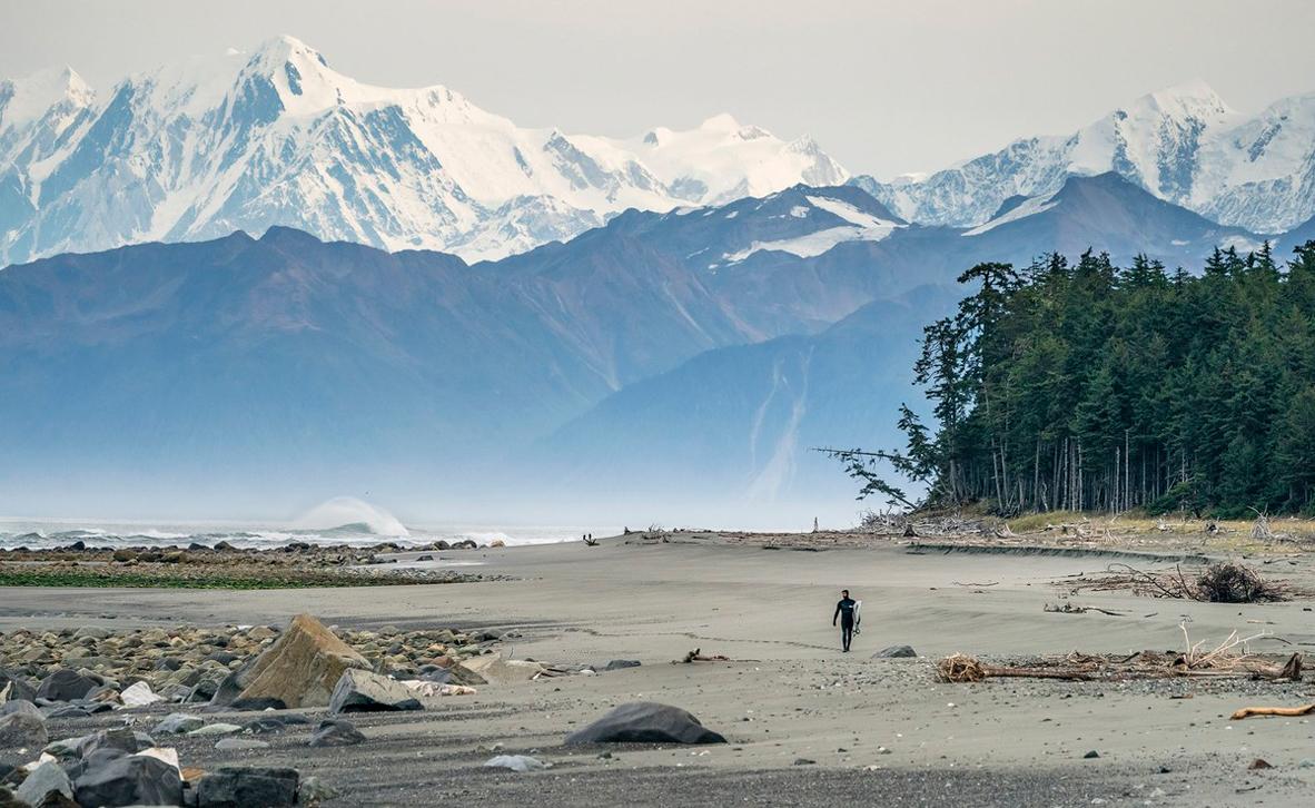 צילום: Mark McInnis / World Nature Photography Awards