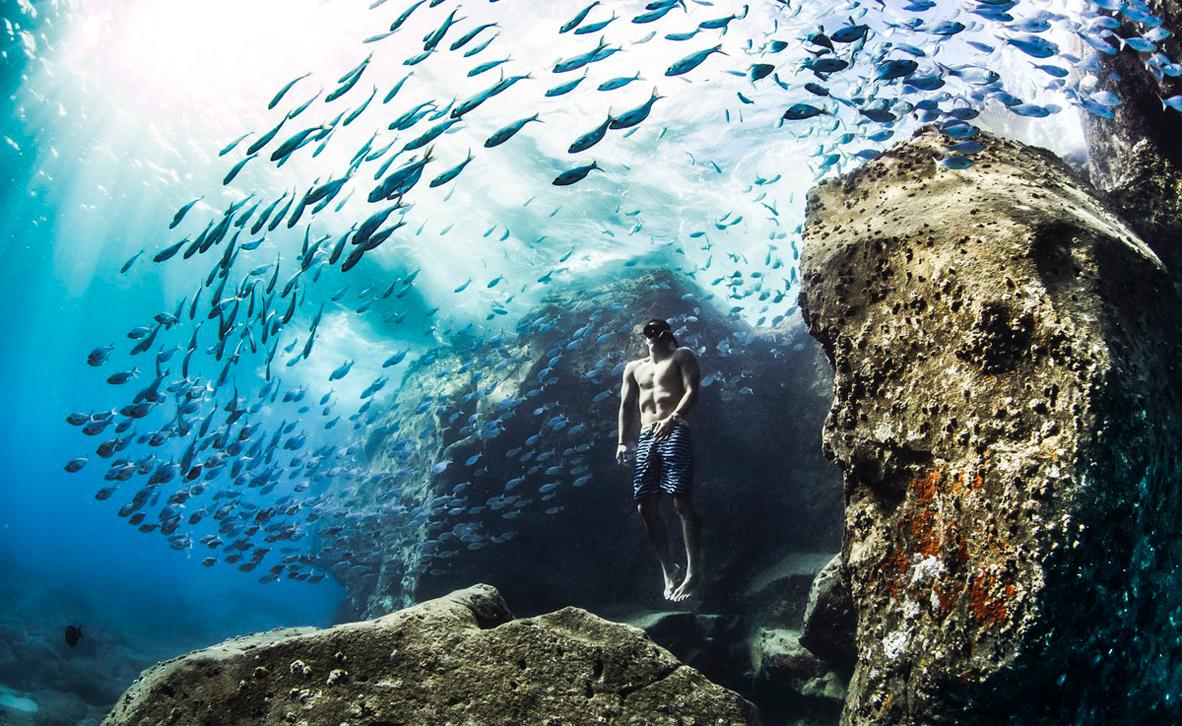 צילום: Christa Funk / World Nature Photography Awards