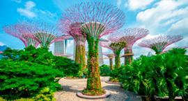 פוטו גנים מוזרים סינגפור , צילום: שאטרסטוק