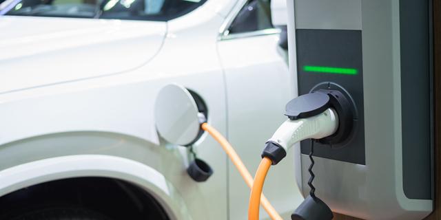 """הדו""""חות הכספיים חושפים: הרכב החשמלי עוד לא ממש תופס בישראל"""