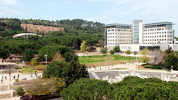 אוניברסיטה הטכניון טכניון חיפה, צילום: טכניון