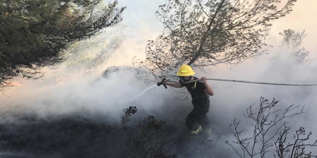 שריפה שריפות חיפה כבאים