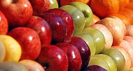 מה עוד יכולה המדינה לעשות כדי להשפיע על מחירי הפירות והירקות?