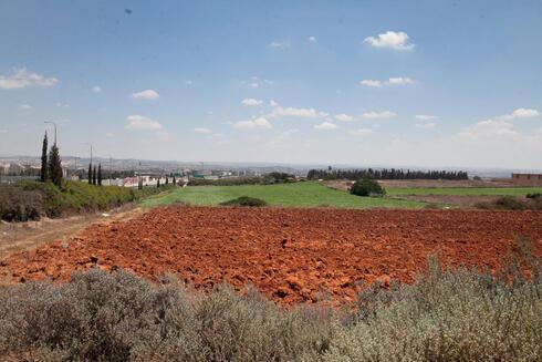 שטח פתוח בכפר סבא, צילום: אוראל כהן
