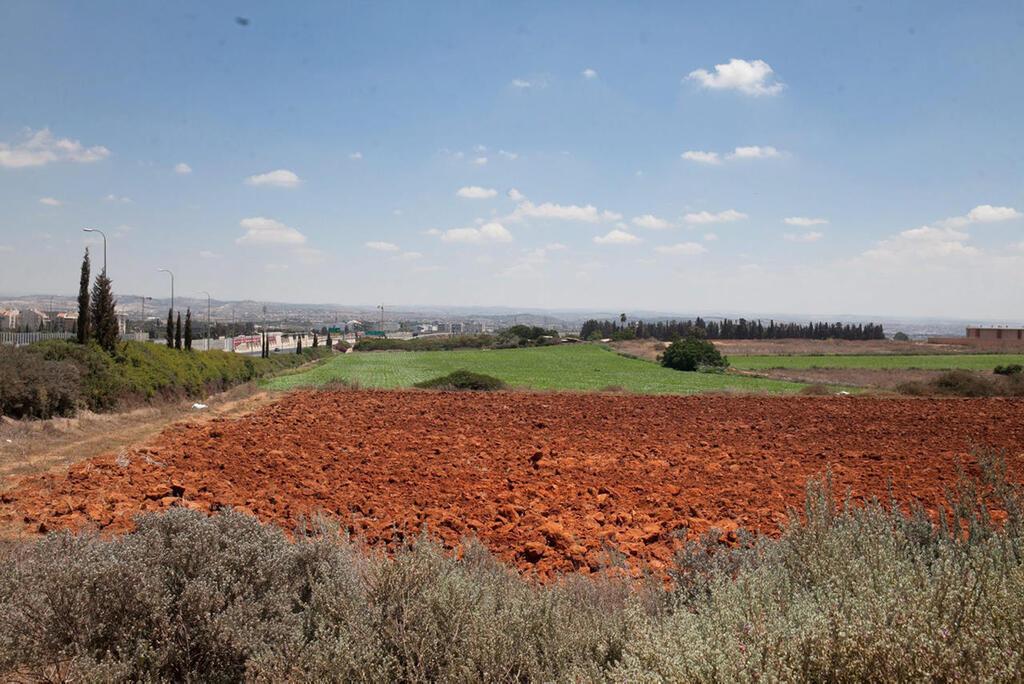 שטח פתוח ב כפר סבא