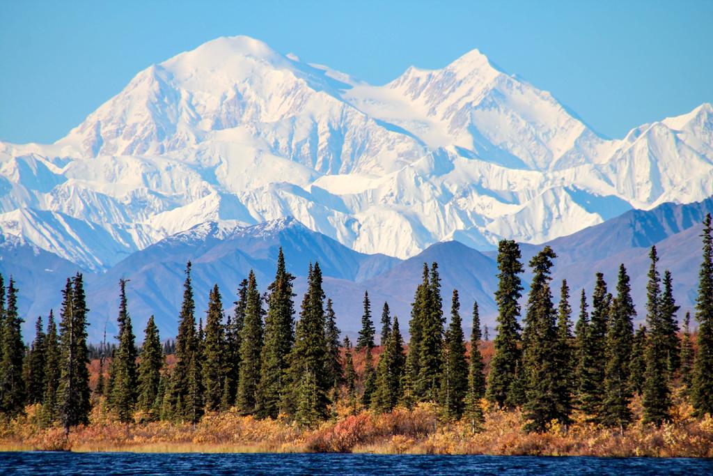 פוטו מקומות קרים בקיץ אלסקה פארק לאומי דנאלי