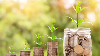 צמיחה כסף השקעה השקעות מטבעות, צילום: pixabay