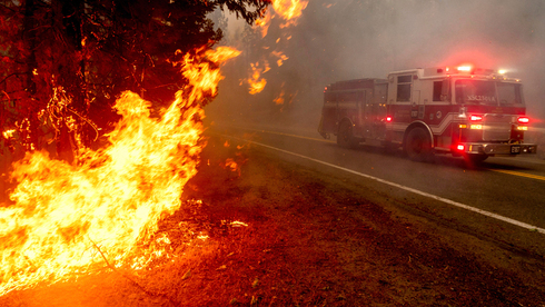 """""""בעבר דיברנו על עונת שריפות. עכשיו מדברים של שנת שריפות"""""""
