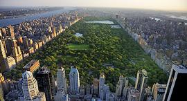 סנטרל פארק מנהטן ניו יורק 1