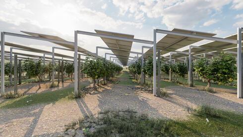 """דוראל תספק אנרגיה סולארית בארה""""ב ב-265 מיליון דולר"""