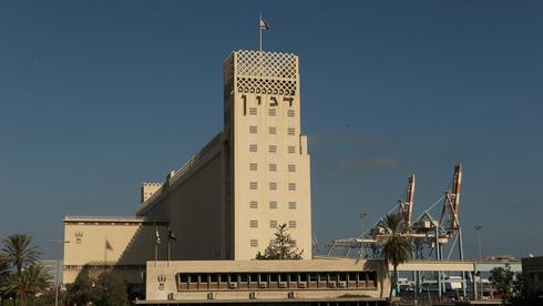העליון דחה את עתירת דגון: גדות כימיקלים תפעיל את ממגורת הדגן בחיפה