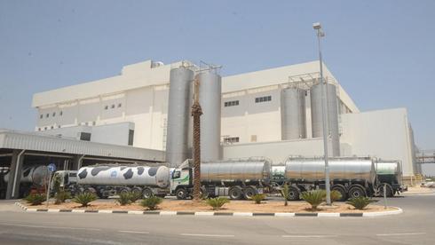 מפעל טרה באזור התעשייה נ.ע.ם., צילום: ישראל יוסף