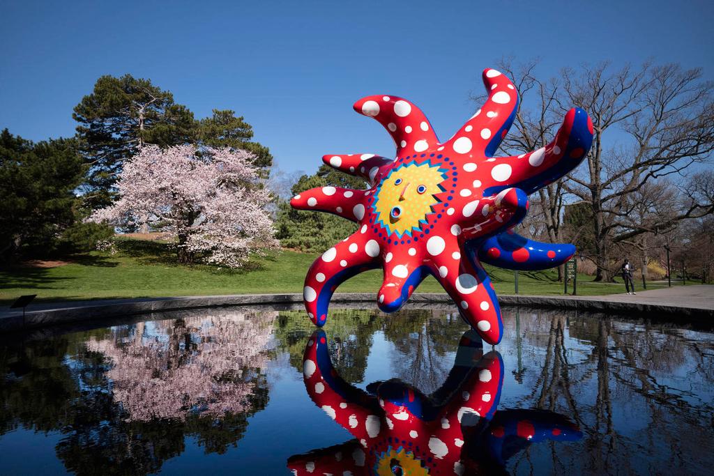 פנאי יצירה של יאיוי קוסמה אמנית גנים בוטניים ניו יורק