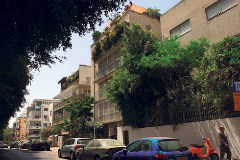 שדרות רוטשילד בתל אביב, צילום: עמית שעל