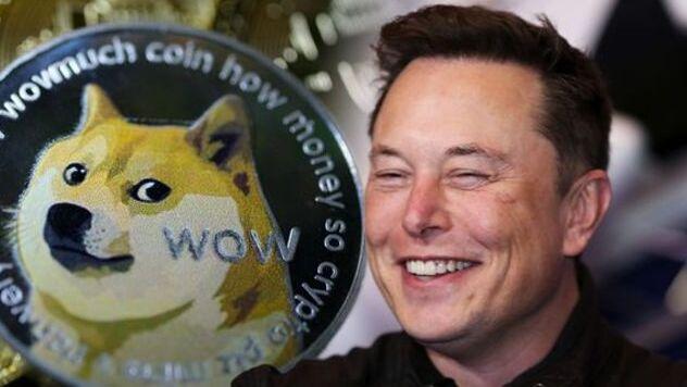"""""""הכלב"""" של מאסק יצא מהמלונה: קוינבייס מאפשרת מסחר בדוג'קוין שמזנק ב-30%"""
