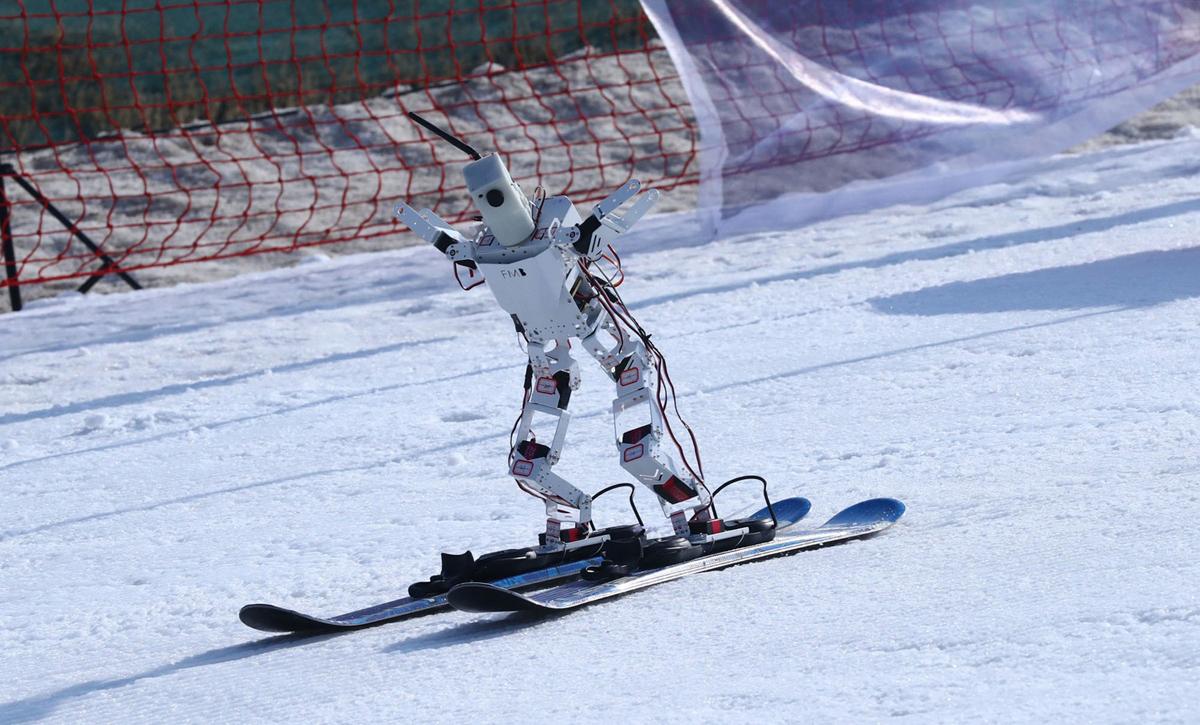 פוטו רובוטים סקי