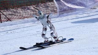 פוטו רובוטים סקי , צילום: גטי אימג'ס