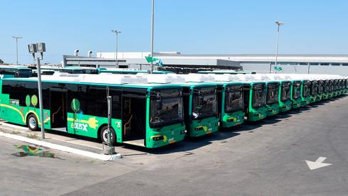 אוטובוסים של אגד תעבורה , צילום: רפי זוהר