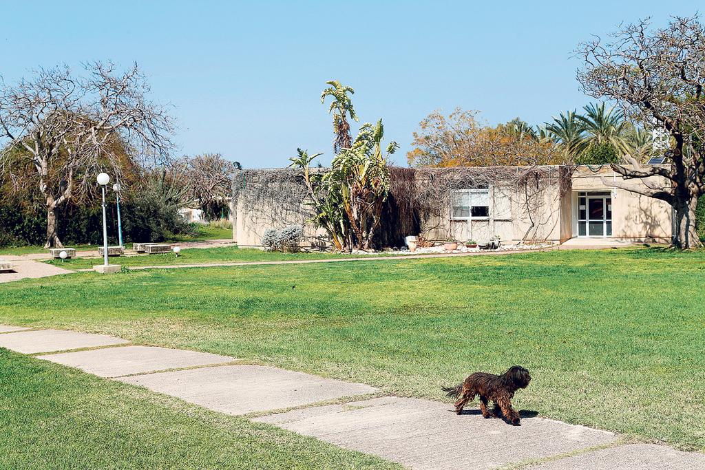 מגורים קיבוץ האון, צילום: עמית שעל