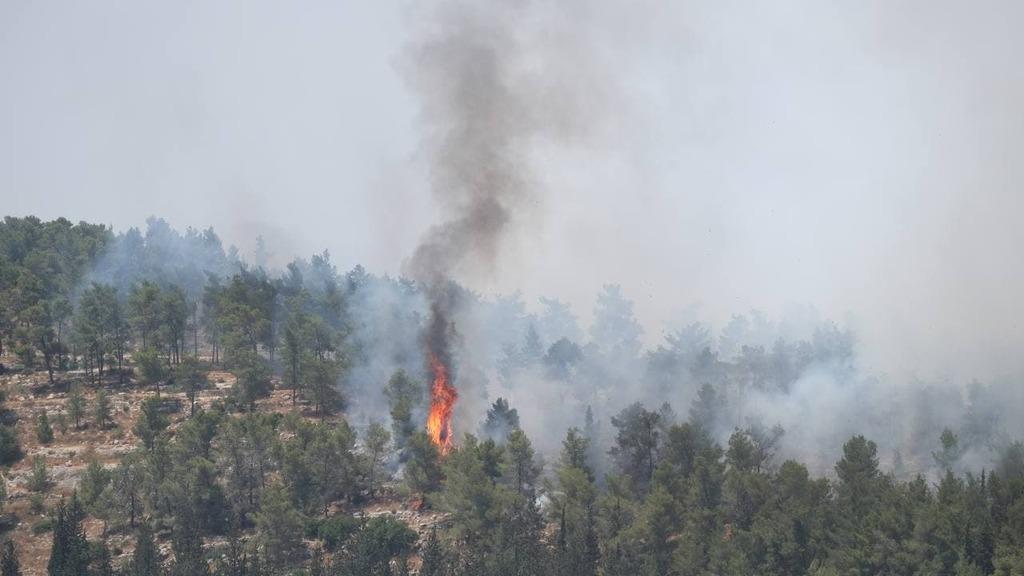 שריפה שריפות ב הרי ירושלים מול נווה אילן
