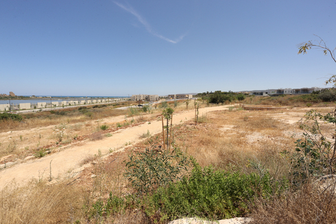 """קו החוף בעתלית. """"התכנון מייצר תחושה של חומה"""", צילום: אלעד גרשגורן"""