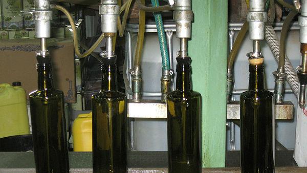 בקבוקי שמן זית ב מרכז ה מבקרים של סבא חביב ב קיבוץ פרוד ב צפון
