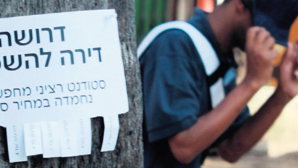 העלייה במחירי הדיור: בישראל זינוק של 81%, ב-OECD רק 20%