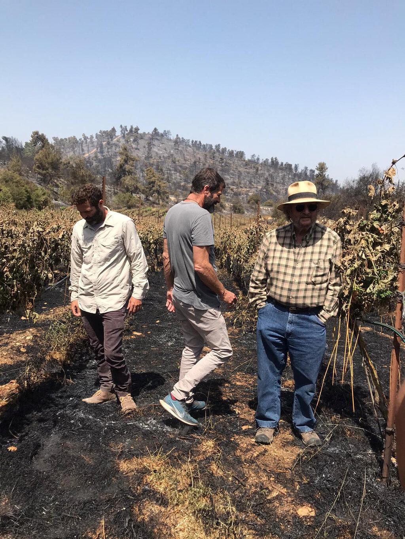 פנאי מימין: אלי איתן ו אריאל בן זקן בכרם השרוף