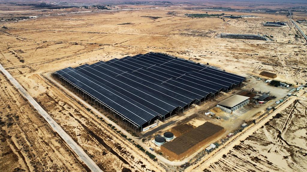 שדה סולארי של פריים אנרג'י בקדש ברנע