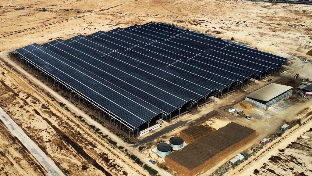 פריים אנרג'י נכנסת לרומניה: תקים מתקנים סולאריים ב-165 מיליון יורו