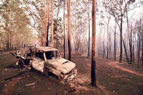 השריפות באוסטרליה, צילום: איי אף פי
